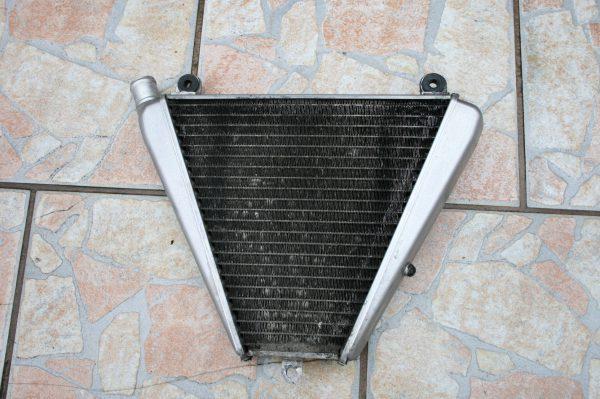 ducati 1199 wasserkühler unten